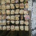 【1月10日も鷲宮神社へ!その6】絵馬のところに近づいた…