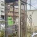 Photos: 栗原団地の公衆電話その1