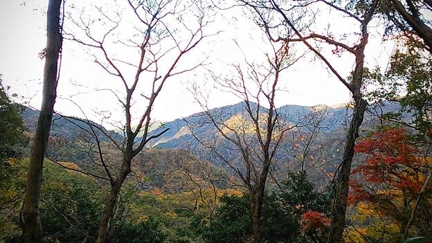 山は秋の装い