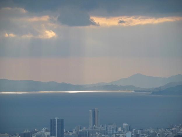 Photos: ひかりの海