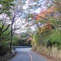 Photos: 再度山ドライブウェイ