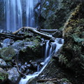Photos: 顧返りの滝