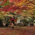 Photos: 恋文神社で