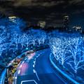 Photos: BLUE LINE