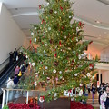 西宮ガーデンズのクリスマスツリー