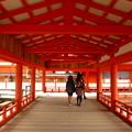 廻廊@厳島神社