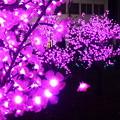 各エリアを約140万球の電球で装飾@広島ドリミネーション