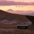 湿原越しの富士