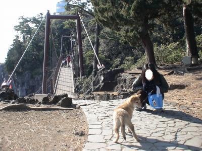 写真: 門脇吊り橋