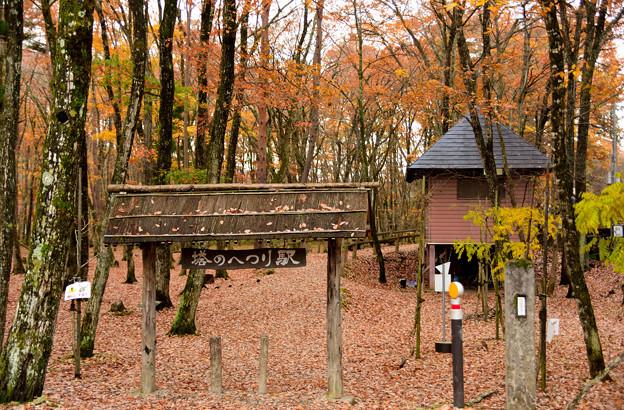 秋の風景(10