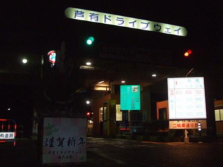 2010_12300024