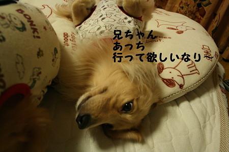 眠れない 2