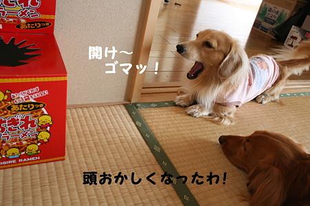 ぶちぎれラーメン 6
