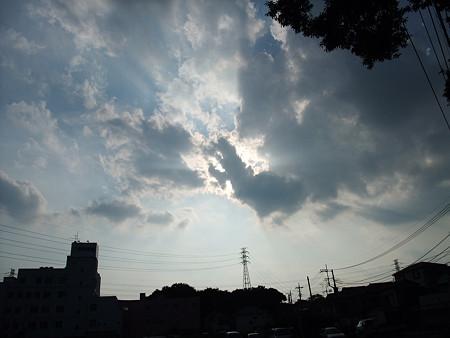雲の様子を見ながらお散歩隊出動!