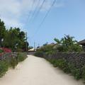 Photos: 石垣の路地