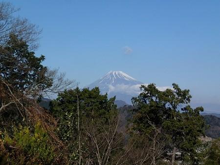 28 1 静岡 伊豆から見た富士