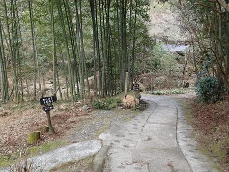 28 2 熊本 田の原温泉 旅館流憩園 2