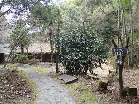 28 2 熊本 田の原温泉 旅館流憩園 3