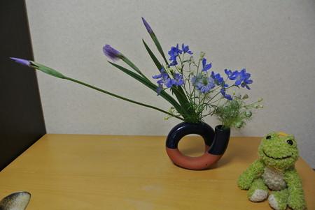 花しょうぶ