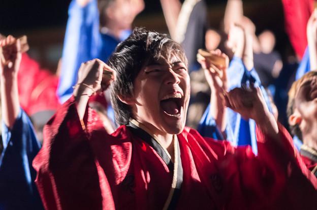 京都さくらよさこい2016 京炎そでふれ!彩京前線