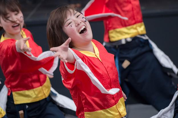 京都さくらよさこい2016 神戸大学よさこいチーム山美鼓