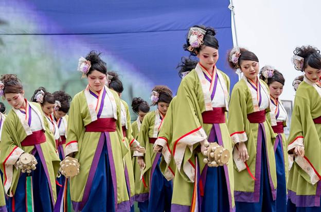 どまつり夜桜 in 岡崎2016 夜宵