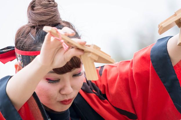"""どまつり夜桜 in 岡崎2016 はんだ踊りん!チーム""""GON"""""""