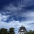 Photos: 彦根城