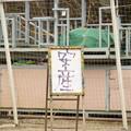Photos: ユメカ作