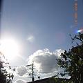 Photos: 2008/11/18午後 南