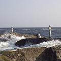 写真: 江ノ島 14