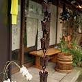 写真: 鎌倉スナップ 07