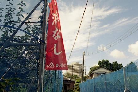 平戸散策 06