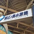 Photos: 江の島水族館