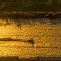 写真: [19]「黄金色の川を行く」