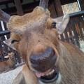 笑ってるね(*^O^*)