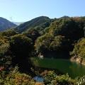 少し紅葉した宮ケ瀬湖周辺