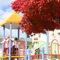 写真: 上諏訪の幼稚園