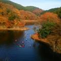 紅葉の宮ケ瀬湖(2)
