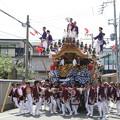 神戸・東灘区 だんじり祭り(1)