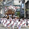 Photos: 神戸・東灘区 だんじり祭り(2)