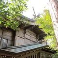 写真: 28.2.15羽黒山鳥屋神社本殿