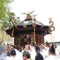 28.4.24鹽竈神社花まつり