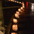 Photos: 160212もりおか雪あかり 盛岡城跡公園 (3)