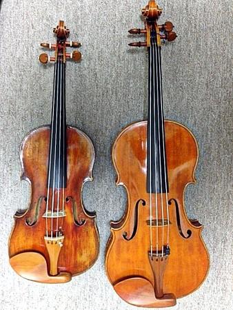 ヴァイオリン向き?ヴィオラ向き?