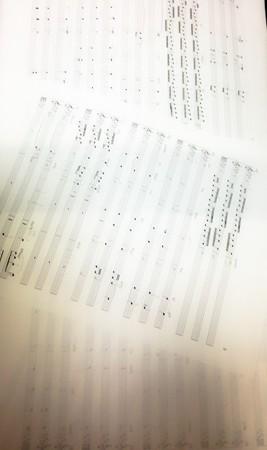 中野・江古田 バイオリン 個人レッスン ヴィオラ 吉瀬弥恵子 ワイズ音楽教室 レコーディング