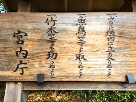 中野・江古田 バイオリン 個人レッスン ヴィオラ 吉瀬弥恵子 ワイズ音楽教室 お墓参り