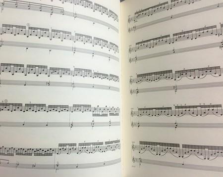 中野・江古田 バイオリン 個人レッスン ヴィオラ 吉瀬弥恵子 ワイズ音楽教室 暗譜