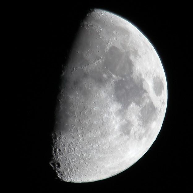 上弦の月+1