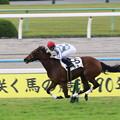 Photos: ラルク(2015/11/07 京都6R 2歳新馬)